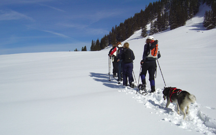 SNOWSHOES TREKKING IN SWITZERLAND raquette424x265_6